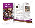 0000081709 Brochure Templates