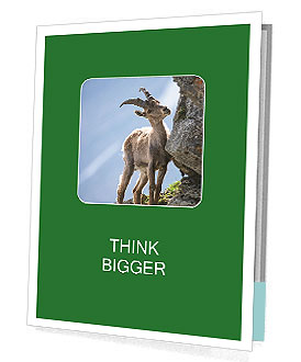 0000081710 Presentation Folder