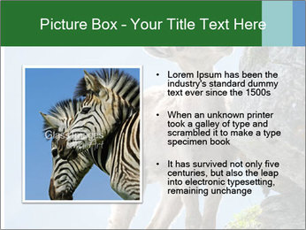 0000081710 PowerPoint Template - Slide 13