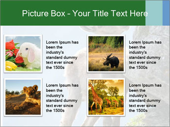0000081710 PowerPoint Template - Slide 14
