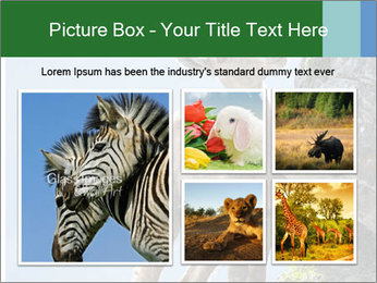 0000081710 PowerPoint Templates - Slide 19
