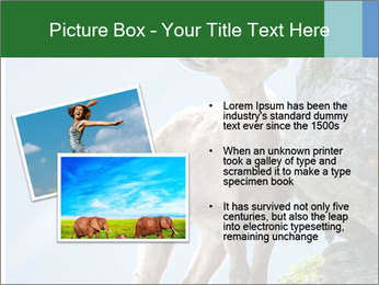 0000081710 PowerPoint Template - Slide 20