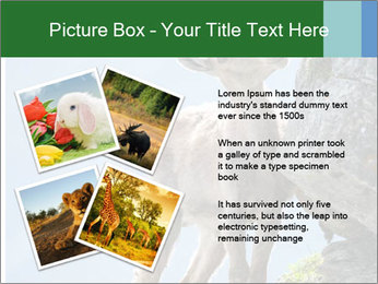 0000081710 PowerPoint Templates - Slide 23