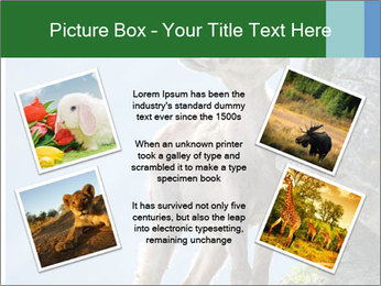 0000081710 PowerPoint Template - Slide 24