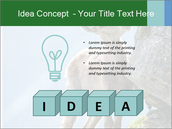 0000081710 PowerPoint Template - Slide 80