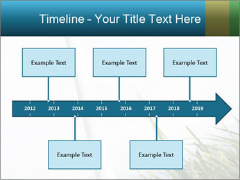 0000081714 PowerPoint Templates - Slide 28