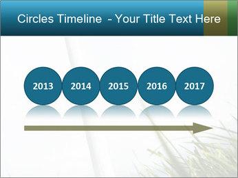 0000081714 PowerPoint Template - Slide 29