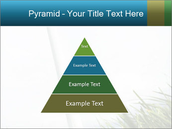 0000081714 PowerPoint Template - Slide 30