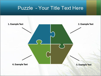 0000081714 PowerPoint Template - Slide 40