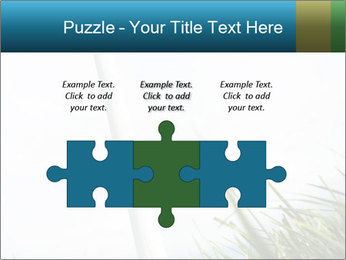 0000081714 PowerPoint Template - Slide 42
