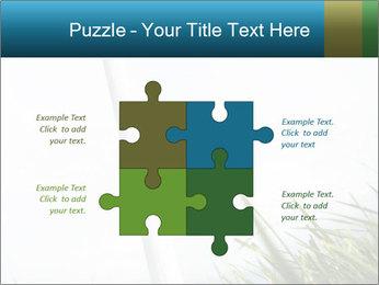 0000081714 PowerPoint Template - Slide 43