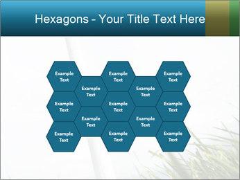 0000081714 PowerPoint Template - Slide 44