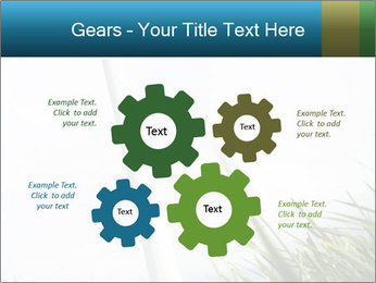 0000081714 PowerPoint Template - Slide 47