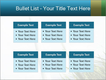 0000081714 PowerPoint Template - Slide 56