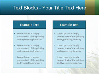 0000081714 PowerPoint Template - Slide 57