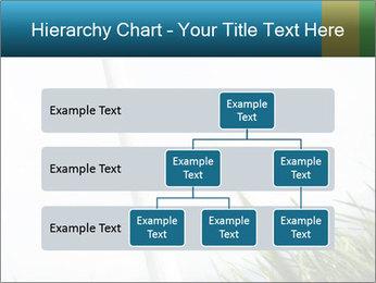 0000081714 PowerPoint Template - Slide 67