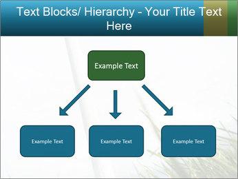 0000081714 PowerPoint Template - Slide 69