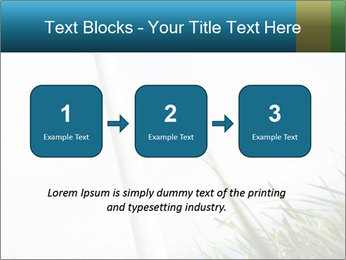 0000081714 PowerPoint Template - Slide 71