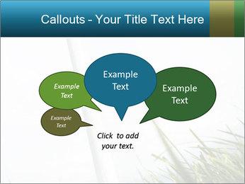 0000081714 PowerPoint Template - Slide 73