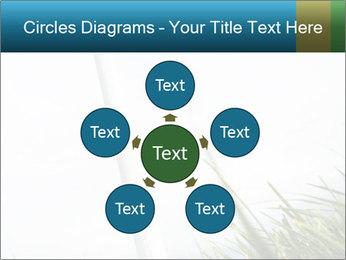 0000081714 PowerPoint Template - Slide 78