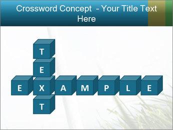 0000081714 PowerPoint Template - Slide 82