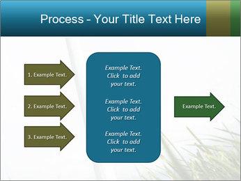 0000081714 PowerPoint Template - Slide 85