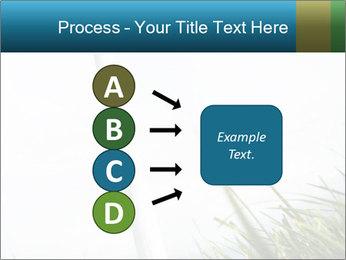 0000081714 PowerPoint Template - Slide 94