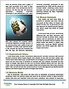 0000081714 Word Template - Page 4