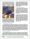 0000081718 Word Templates - Page 4