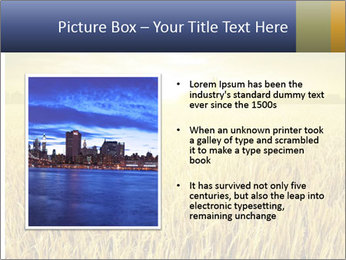 0000081722 PowerPoint Template - Slide 13