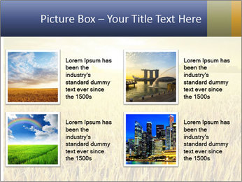 0000081722 PowerPoint Template - Slide 14