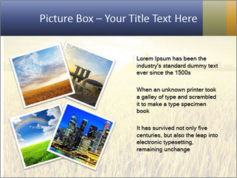 0000081722 PowerPoint Templates - Slide 23