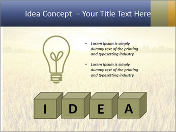 0000081722 PowerPoint Template - Slide 80