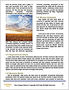 0000081722 Word Template - Page 4