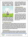 0000081725 Word Templates - Page 4