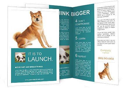 0000081726 Brochure Templates