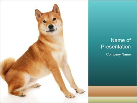 0000081726 PowerPoint Templates