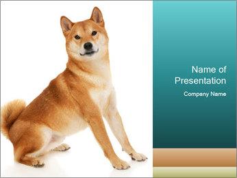 0000081726 PowerPoint Template - Slide 1