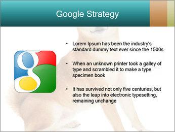 0000081726 PowerPoint Templates - Slide 10