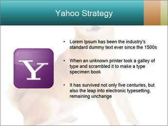 0000081726 PowerPoint Templates - Slide 11