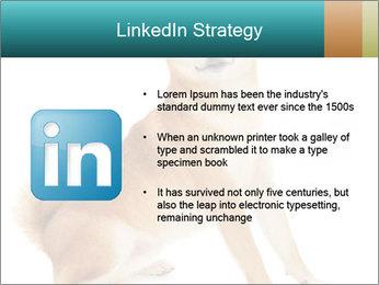 0000081726 PowerPoint Templates - Slide 12