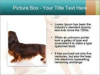 0000081726 PowerPoint Templates - Slide 13