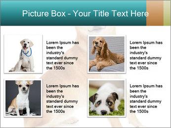 0000081726 PowerPoint Templates - Slide 14