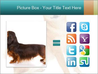 0000081726 PowerPoint Templates - Slide 21