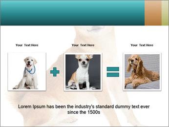 0000081726 PowerPoint Template - Slide 22