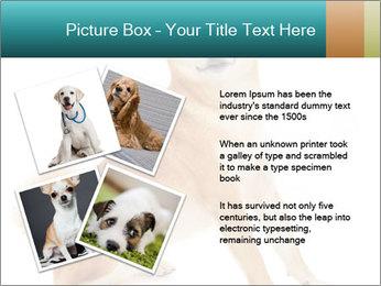 0000081726 PowerPoint Templates - Slide 23