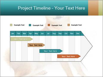 0000081726 PowerPoint Templates - Slide 25