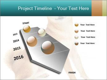 0000081726 PowerPoint Templates - Slide 26