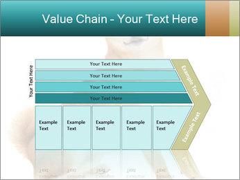 0000081726 PowerPoint Template - Slide 27