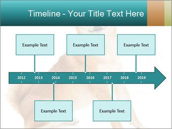 0000081726 PowerPoint Templates - Slide 28